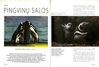 "Article about penguins in Lithuanian magazine ""GEO Lietuva"" (Part 1)"