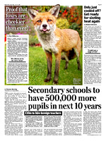 Red Fox in 'Daily Mail'